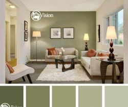 home paint colors ideas hyderabad