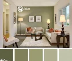 home paint colors ideas hyderabad
