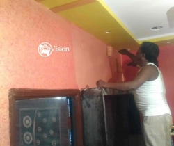 wall painter in Hyderabad my vision